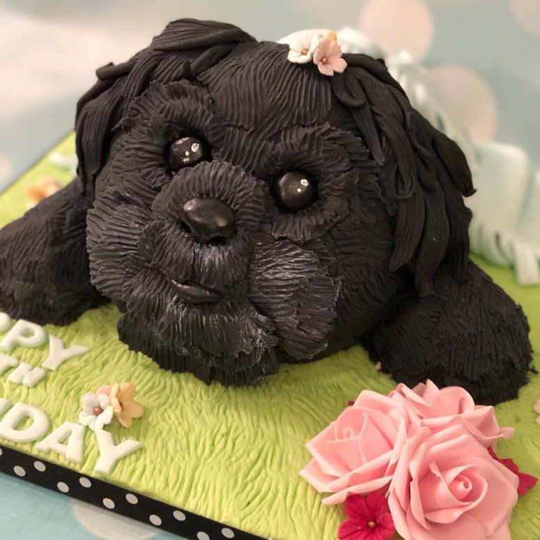 Puppy Novelty Birthday Cake Black Fluffy