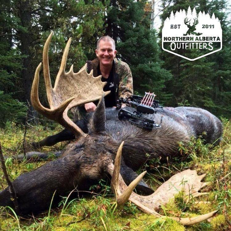 ELK HUNTING BUCKS  ALBERTA OUTFITTING  WOLF WHITETAIL BEAR