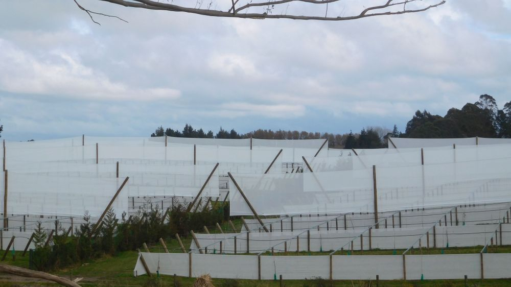 Artificial Shelter Erickson Fencing Ltd