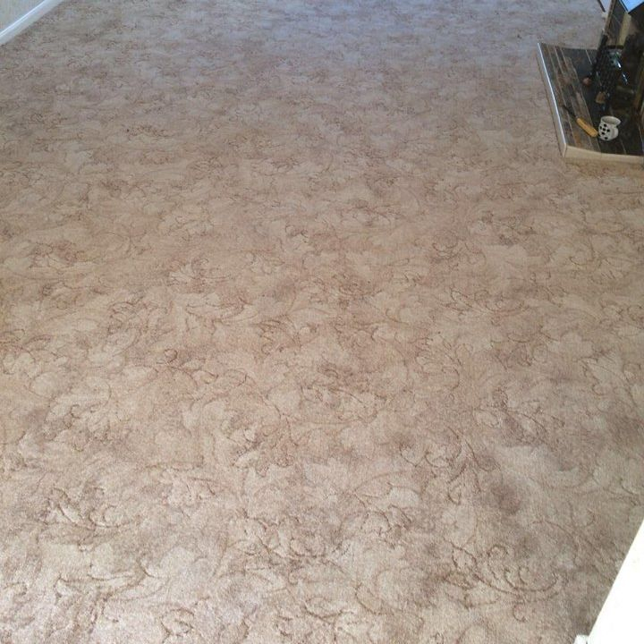 Beige Patterned Carpet