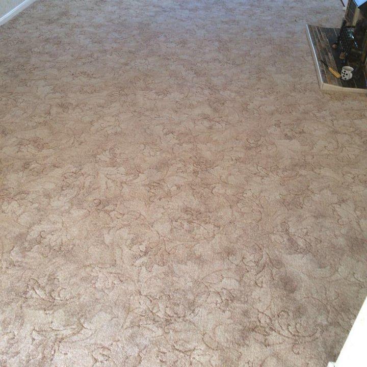 Beige Patterned Carpet