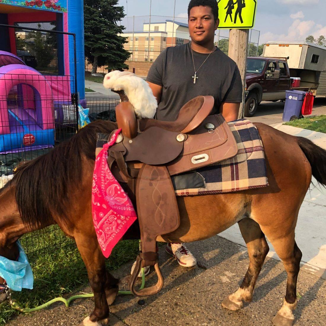Large Pony