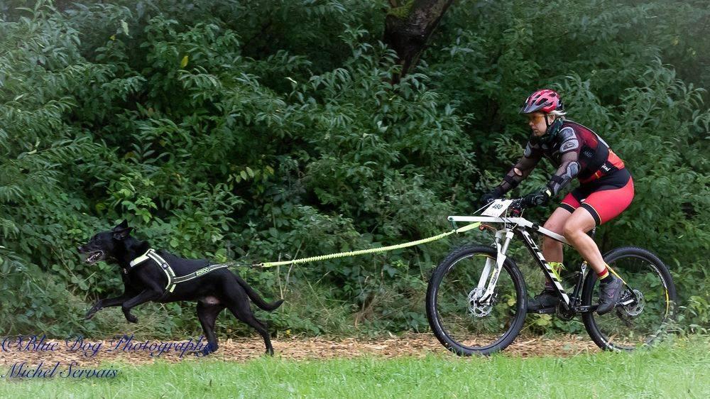 bike-jöring mountainbiken met de hond