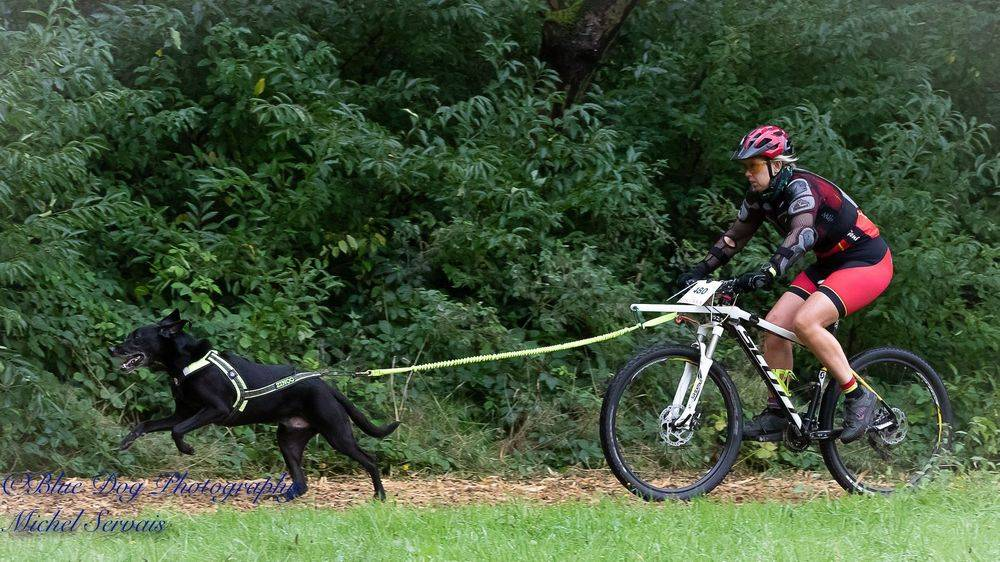 bike-jöring mountainbiken met de hond
