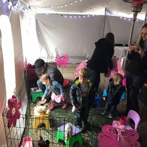 Children playing with animals inside a  tent