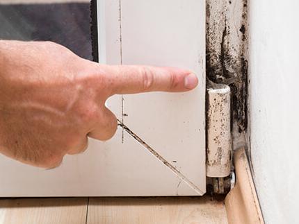 Mold Inspection & Testing Fremont CA