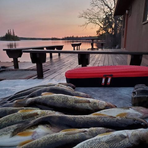 fishing lodge Manitoba Canada cabin rentals guided fishing walleye northern pike smallmouth bass