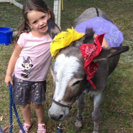 Little girl standing next to donkey