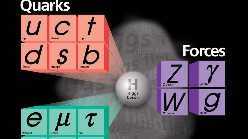 Standard Model, Fundamenta Interactions, Fundemental Forces, Quarks, Leptons, Forces, Gravity, Electromagnetism, Nuclear Forces