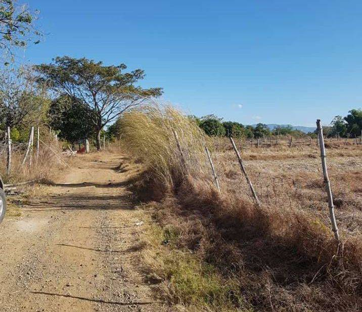 5 plus hectares farm in talugtug nueva ecija, rush sale 5 hectares farm in talugtug nueva ecija, ruah sale farm with piggery and house and resthouse in talugtug nueva ecija