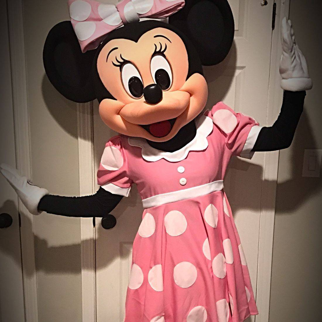 Mouse character in pink dress with white polka dots smiling for the carmera