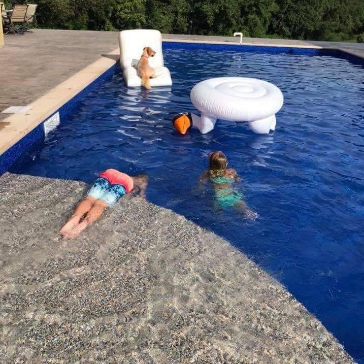 Happy Swimming Pool Customer