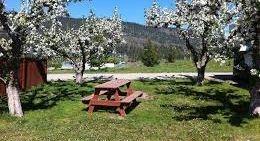 Apple Orchard RV Park Kelowna BC