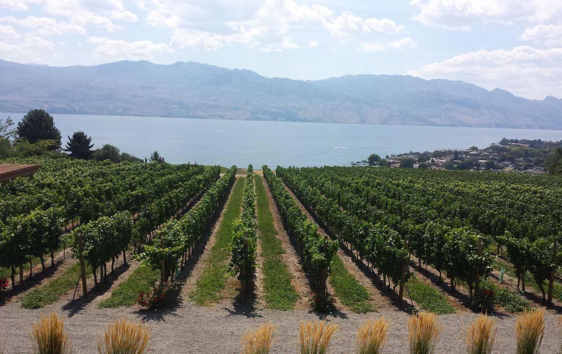 Land & Lake Wine Boat Tour