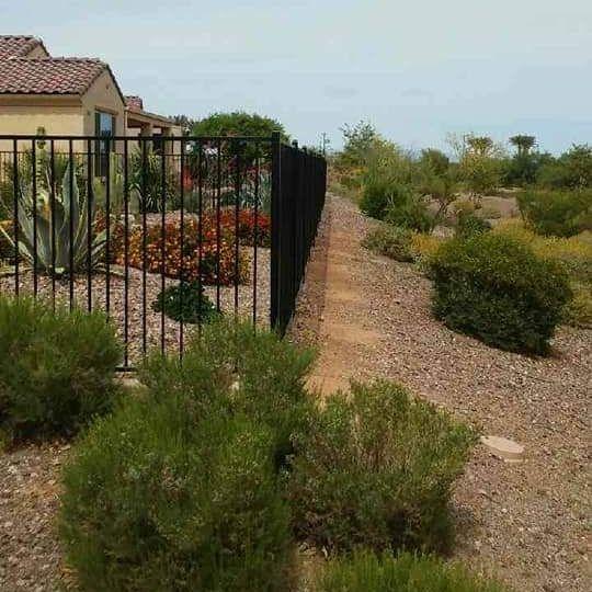 AZ iron fence