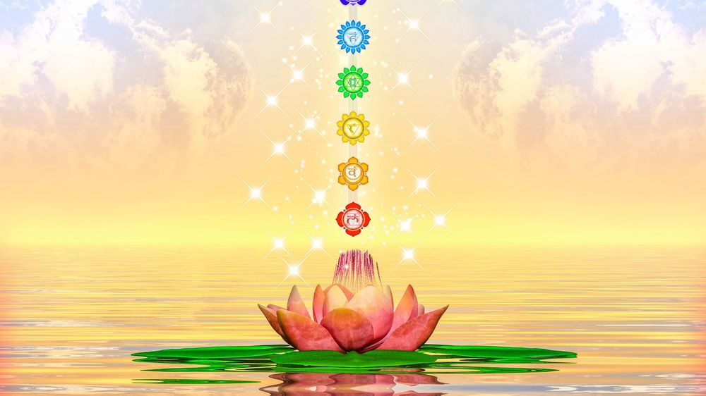 Best chakra awareness readings orland park