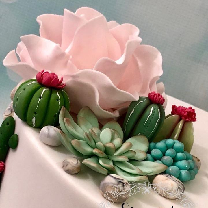 Cactus Cacti Birthday Cake Cupcakes Succulents Roses Pink Flowers Stones