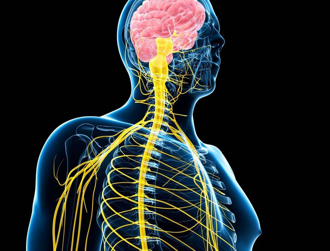 Acupuncturist for Neuralgia Rochester NY