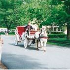 Carriage rides Tours City of Boston Chatham St Boston Holbrook,Ma