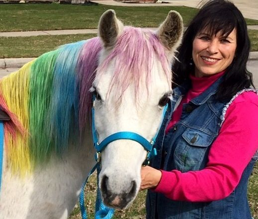 Ponies for birthday party