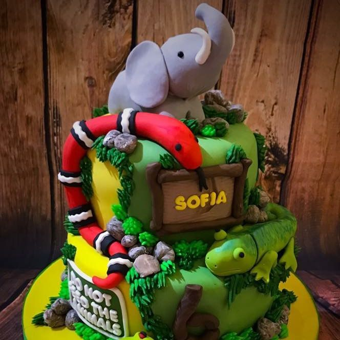 animals snake elephant lizzard cake luton dunstable bedfordshire
