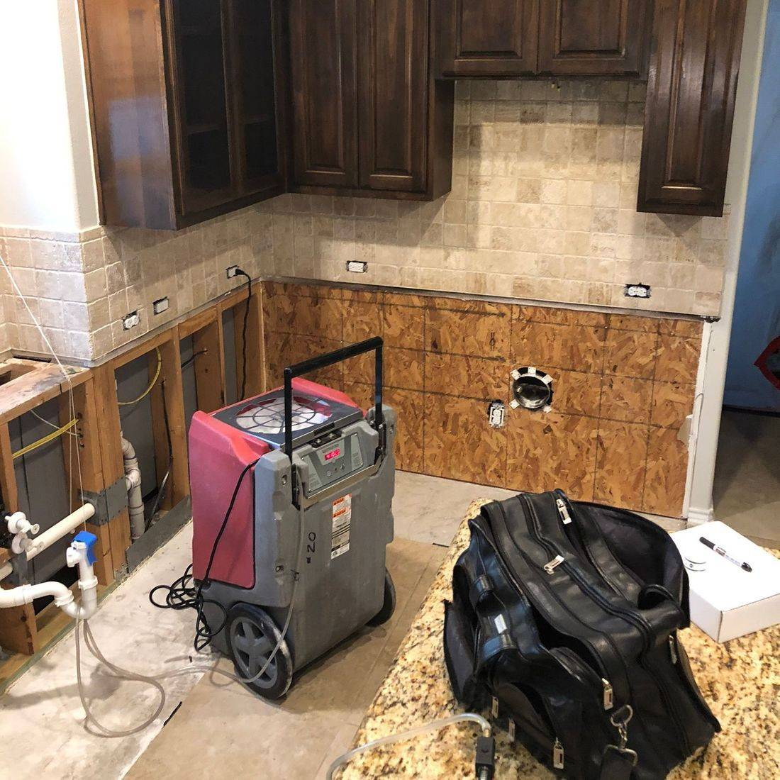 Mold Remediation, mold consulting, mold inspection