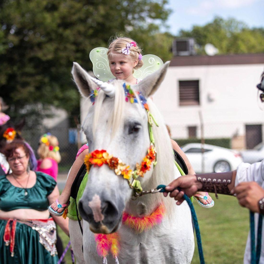 Unicorn Rides, and Unicorns