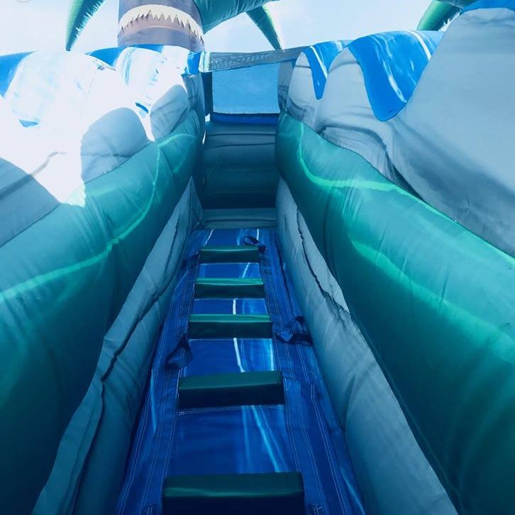 blue crush Palm Tree Waterslide Inflatable