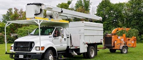 tree truck service amhest