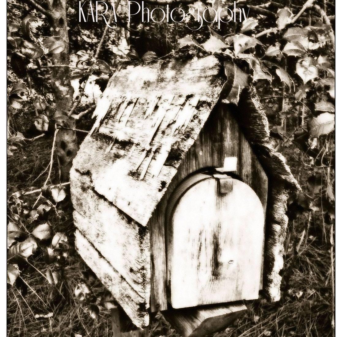 Vintage, Woods, Mailbox