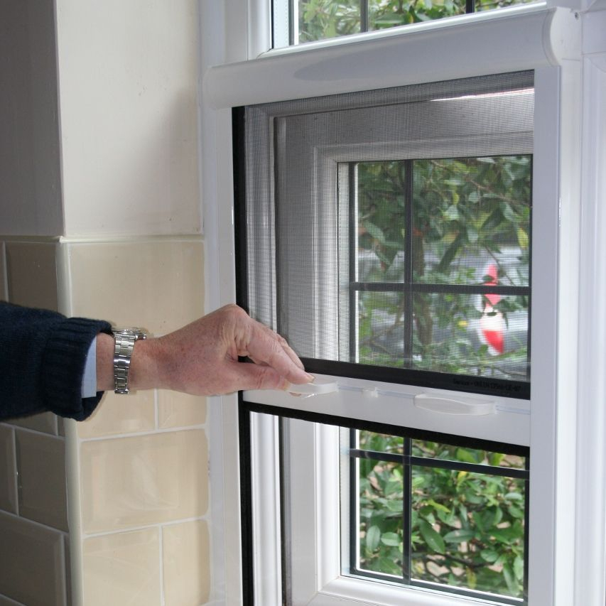 flyscreen bury blinds flyscreen rollers flyscreen bury st edmunds