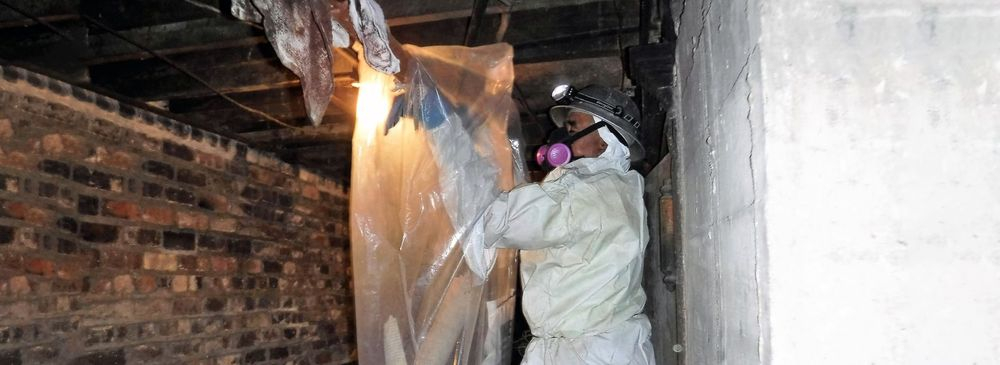 Asbestos Testing Service Berkeley CA