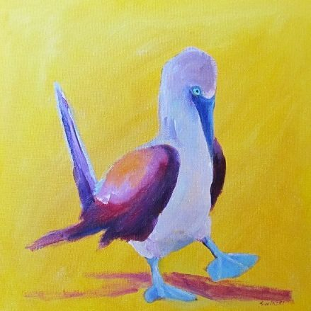 blue footed boobie painting