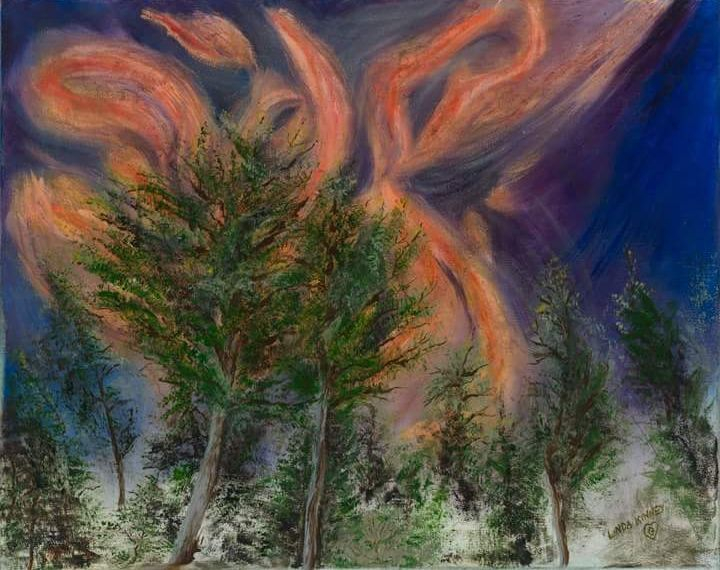 Fire, Forest, Smoke, Navy, Orange, Green, Summer, New Mexico, Danger, Destruction
