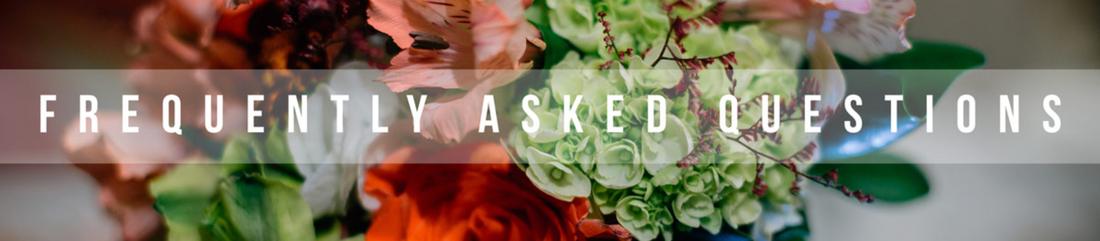 Toni Todd FAQ's