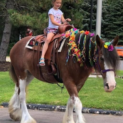 Clydesdale horse dressed as a unicorn with little girl on his back
