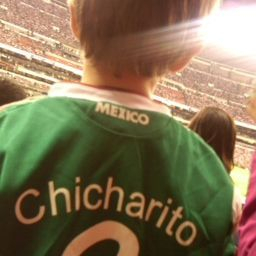 TCWOF soccer stadium Chicharito