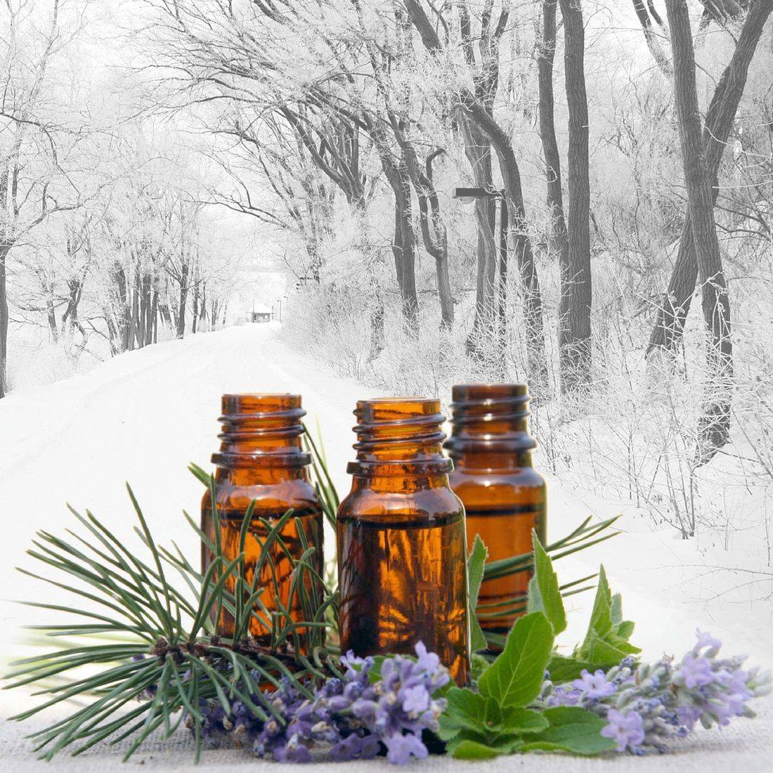 Fort saskatchewan, fort sask,essential oil ; massage therapy ; ginger ; eucalyptus ; thyme ; tea tree ; diffuser