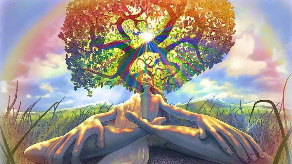 best tree of life psychic orland park
