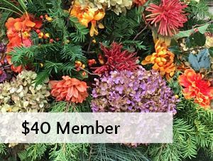 $20 member fee workshop