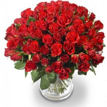 roses, anniversary, delivery, fresh, flowers, valentines, mothers day