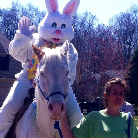 Easter bunny riding on white horse