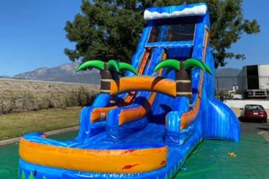 22ft purple paradise waterslide inflatable party rental