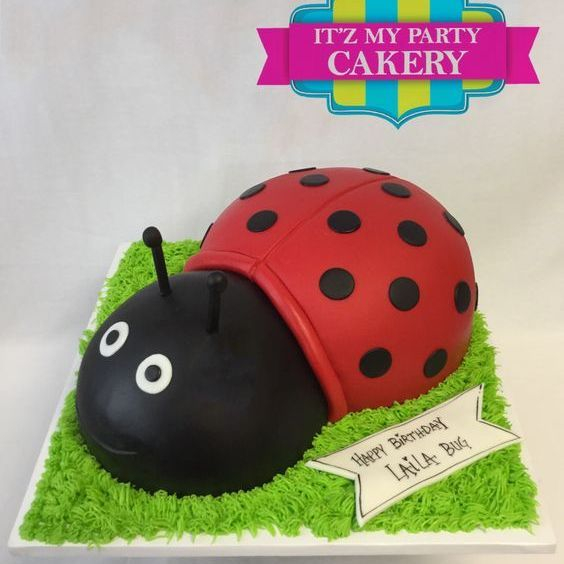 Lady Bug Dimensional Cake Milwaukee