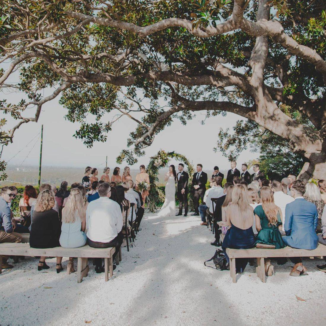 Sianna and Tyson's Fig Tree Wedding