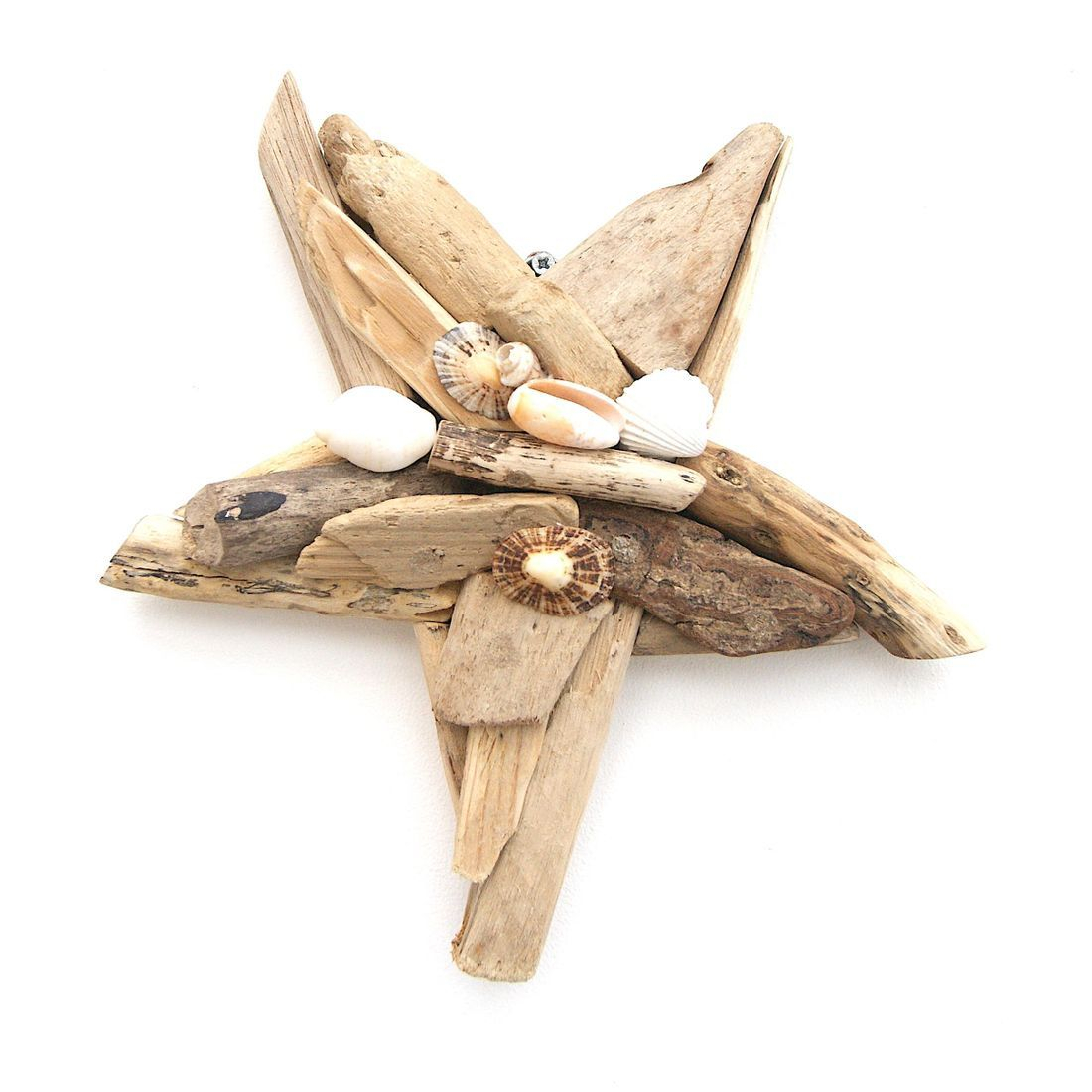 Driftwood Starfish 5