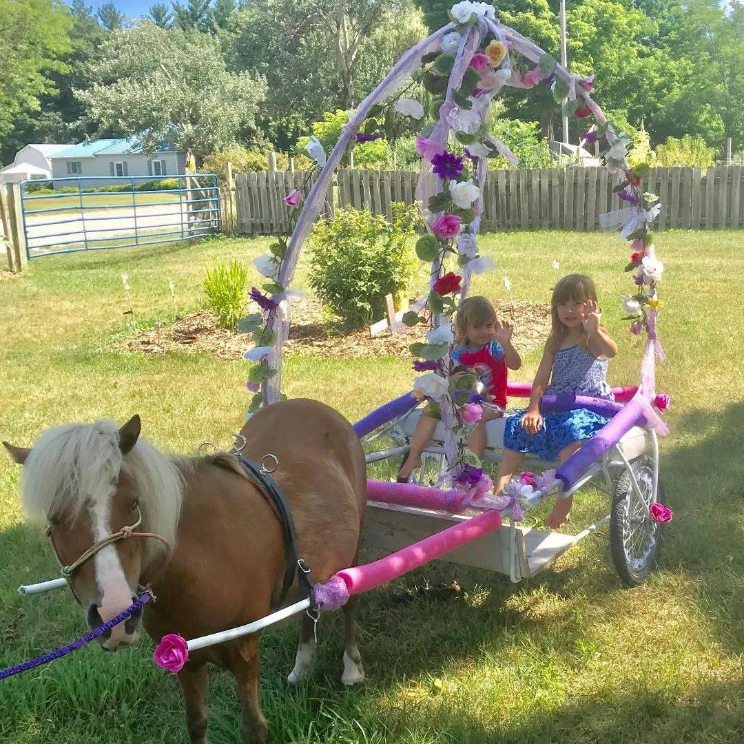 Pony dressed as unicorn with pink saddle