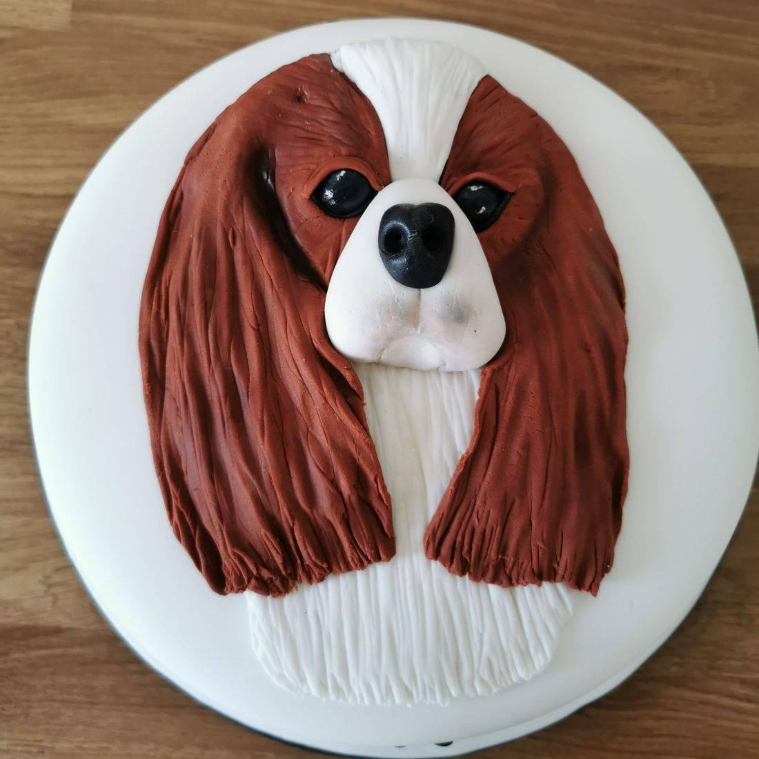 Harry Potter themed Novelty Cake