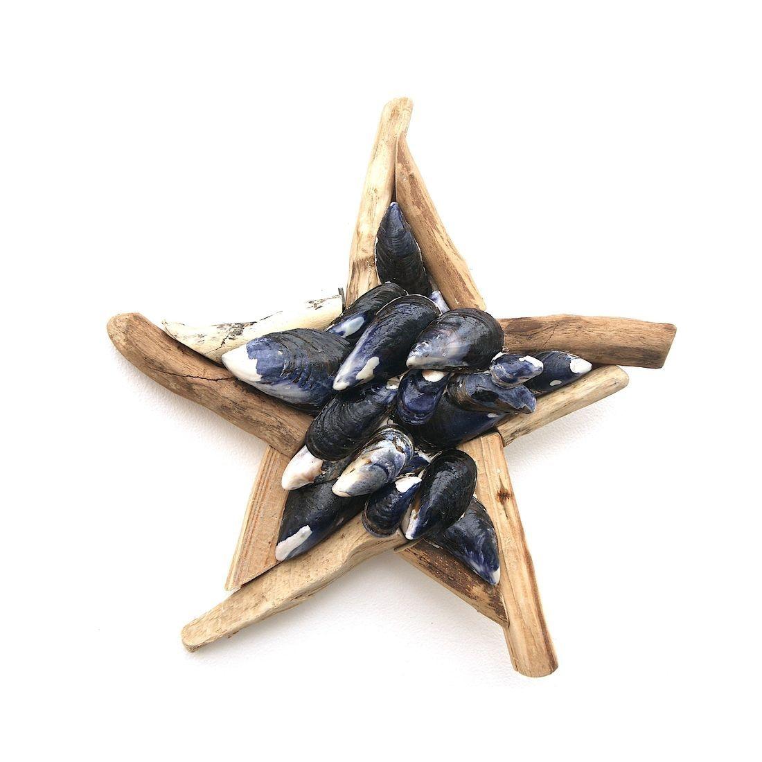 Driftwood Starfish 10