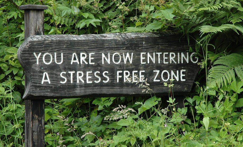 stress free zone, laser stress reduction at Lighten Up Laser Therapy and Colonics in Comox